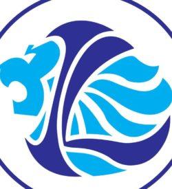 new lion logo